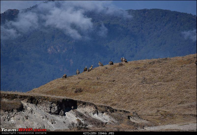 Red Rhino goes to Sandakphu for the second time-14.jpg