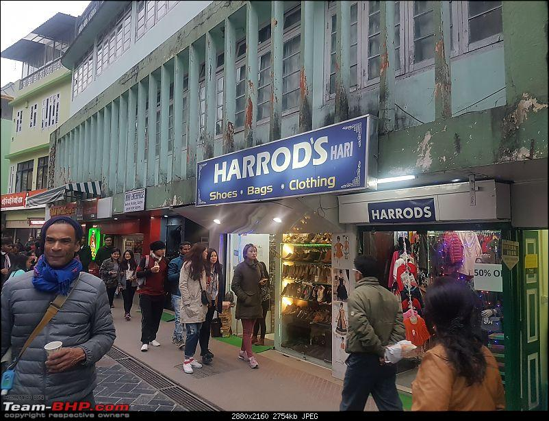 A Dinosaur and a Snail take the Silk Route to Sikkim and Bhutan!-harrods.jpg