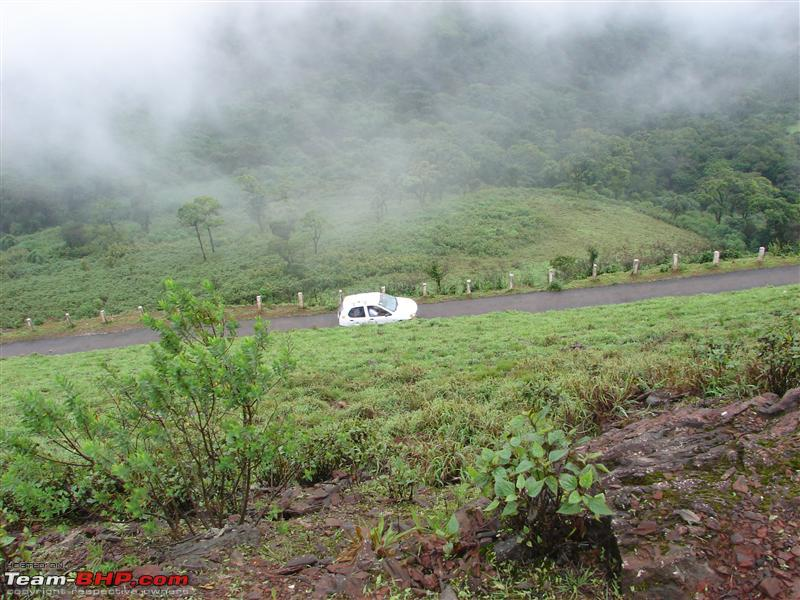 Name:  Chikmagalur 094.JPG