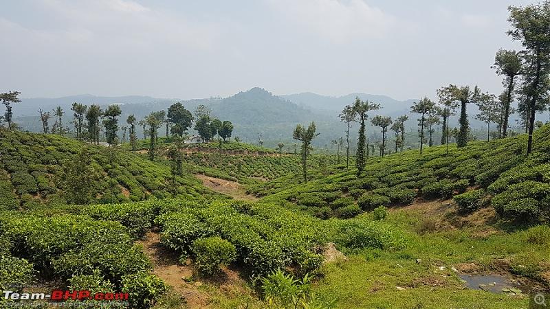 Parambikulam through Valparai - Escape from madness-image00016.jpg