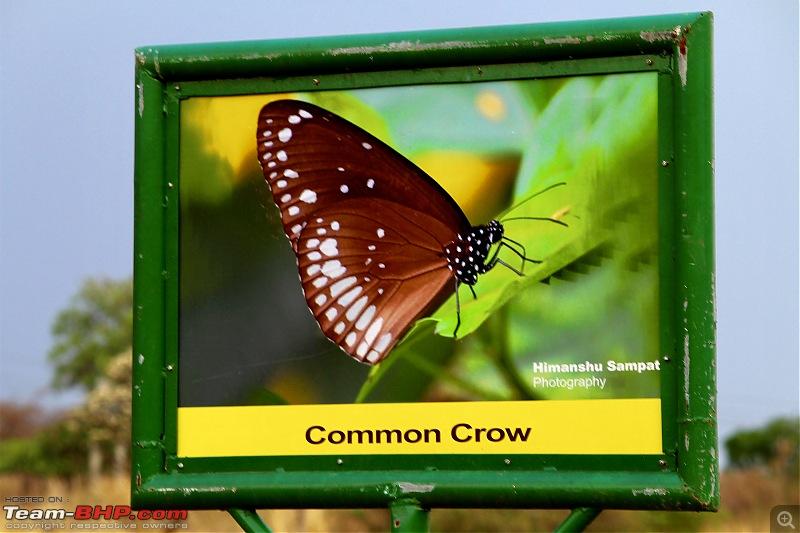Isuzu MU-X goes to the Tipeshwar wildlife sanctuary-16153b4befe3485f9e572b9cb102909d.jpeg