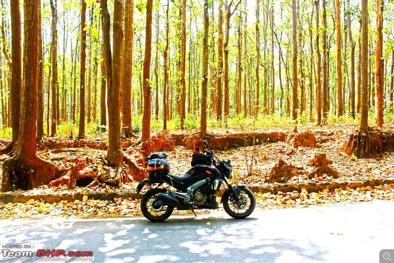 To the last village of India - Mana, Uttarakhand. Chronicles of a Lone Biker-img_4409.jpg