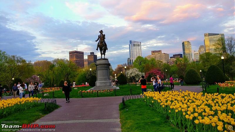 Backpacking 'Murica' - 2 weeks in the USA-boston_public.jpg