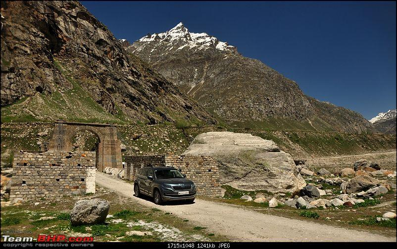 Alaskan bear in Snow leopard territory - The Kodiaq expedition to Spiti-dsc_0073.jpg