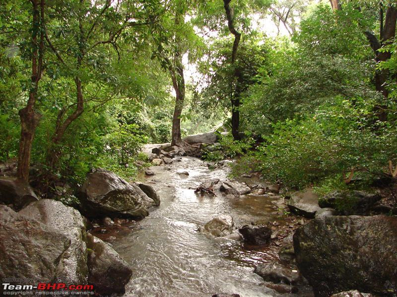 Name:  Chikmagalur 048.JPG