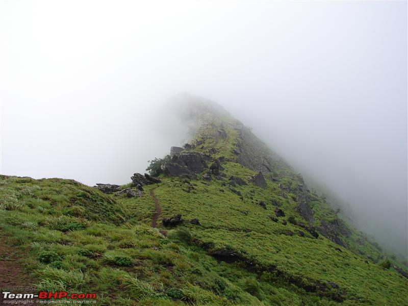 Name:  Chikmagalur 107.JPG