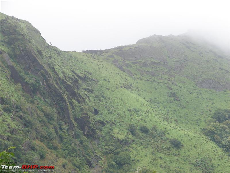 Name:  Chikmagalur 139.JPG