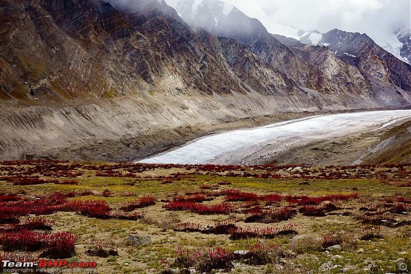 Altitude - The PhotoLog. Ladakh, the wilder one-20160828dsc02163x3.jpg