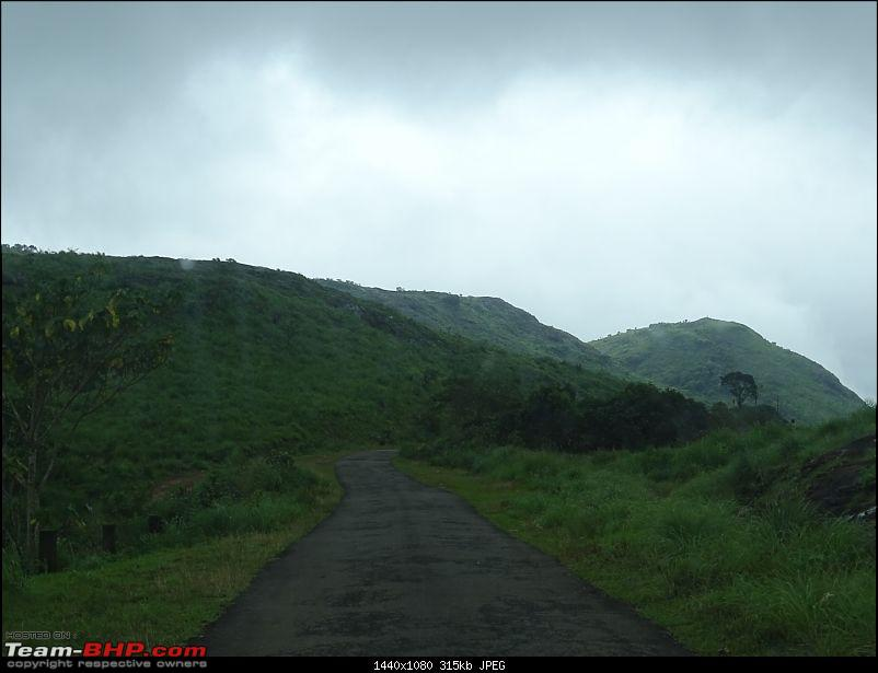 Cochin Diaries: The misty hills of Vagamon-dsc01661.jpg