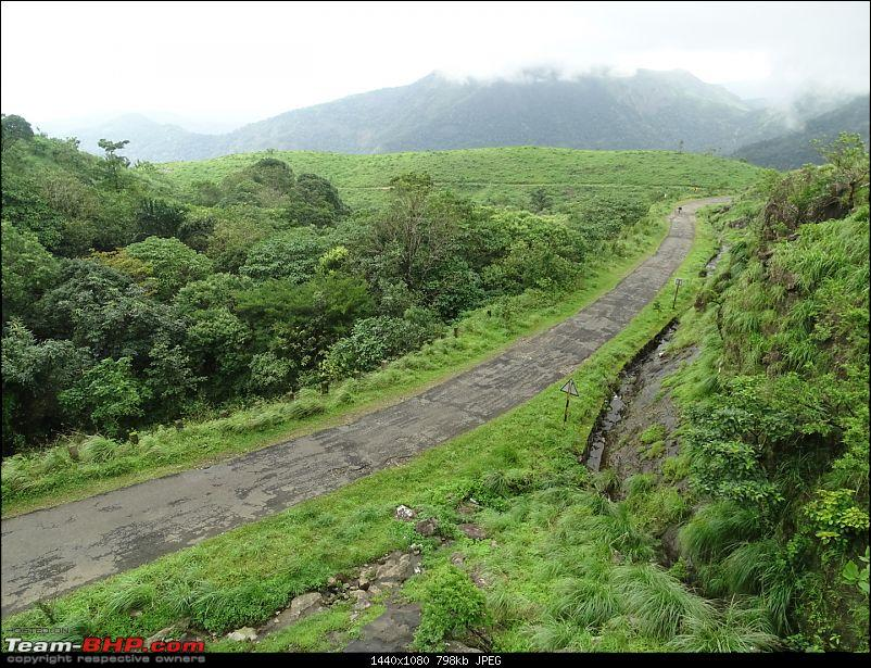 Cochin Diaries: The misty hills of Vagamon-dsc01665.jpg