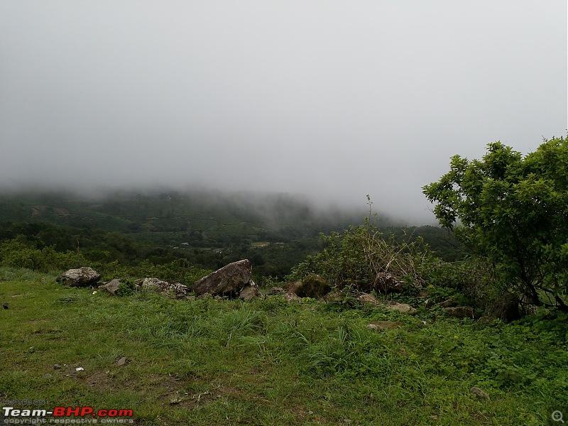 Cochin Diaries: The misty hills of Vagamon-img_20180623_113742.jpg