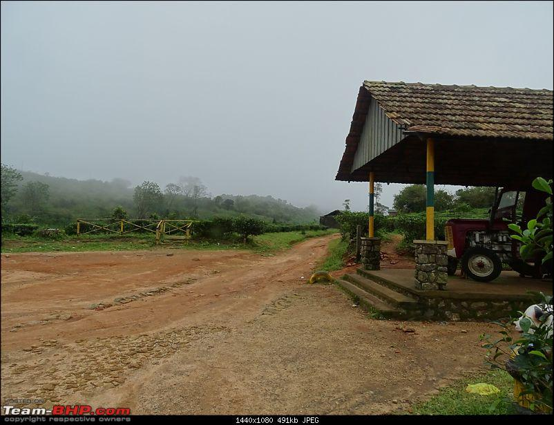 Cochin Diaries: The misty hills of Vagamon-dsc01701.jpg