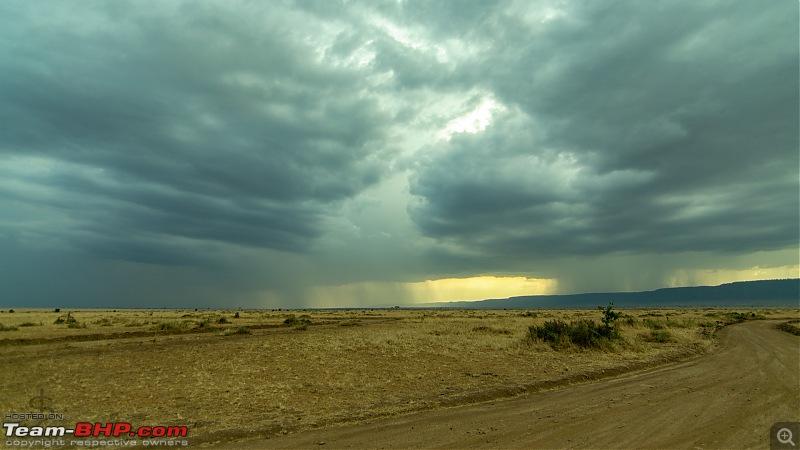Masai Mara - A magical week in wildlife heaven-tbhp04022-mm5403w.jpg