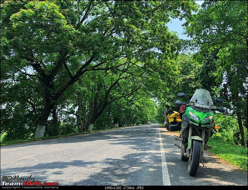 Amazingly magnificent & enchantingly awesome North East India - A 10,000 km Ride!-260.jpg