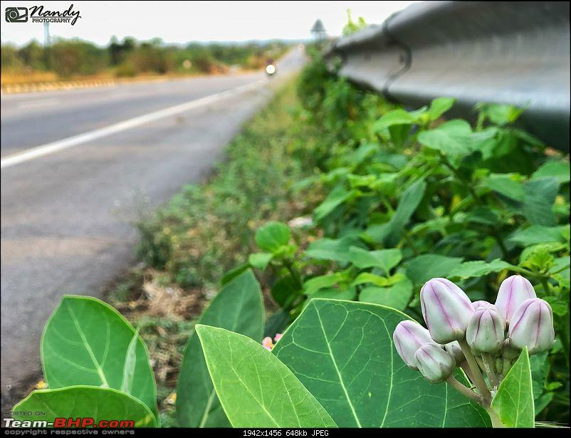 Amazingly magnificent & enchantingly awesome North East India - A 10,000 km Ride!-357.jpg
