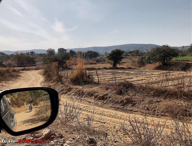 Video Tour | Tree of Life, Jaipur | Staycation-enlight1079.jpg