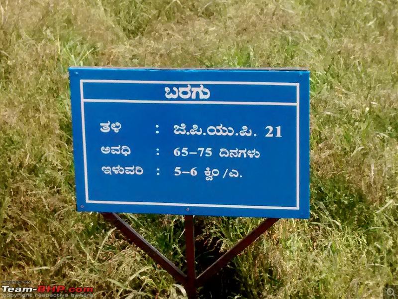 Pics: Krishi Mela in Bengaluru, 2018-img_20181117_105720560.jpg