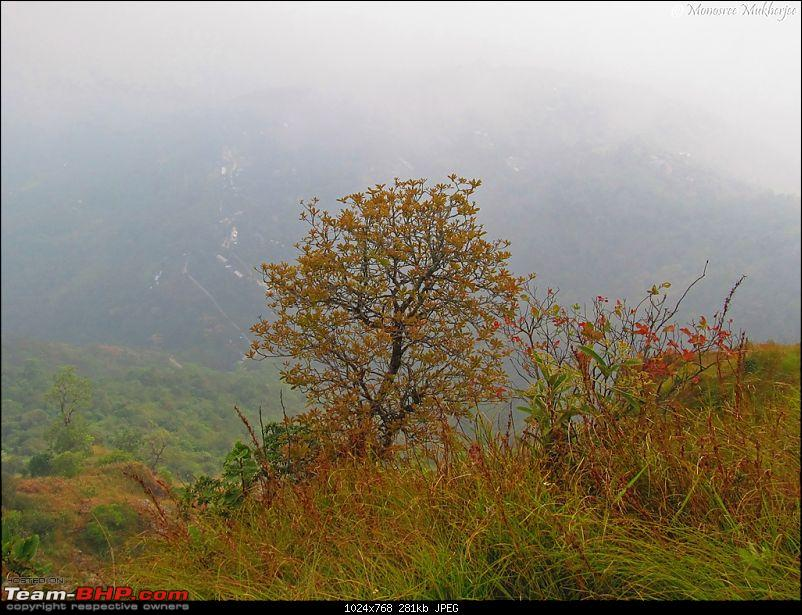 An Autumn Diary : Road trip to Sikkim and the hills of North Bengal-img_9612.jpg
