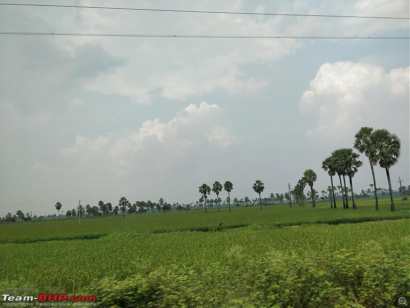 HexLogs - Drive from Bangalore to Bhutan in a Tata Hexa-ap-paddy-fields1.jpg