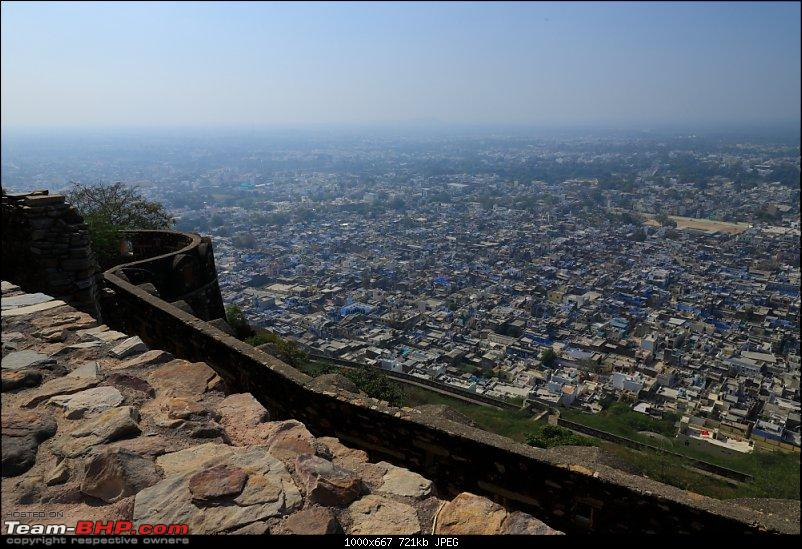 Forts, Birds and Tigers : A 4500 km 18 day road-trip to Rajasthan-_mg_1212.jpg