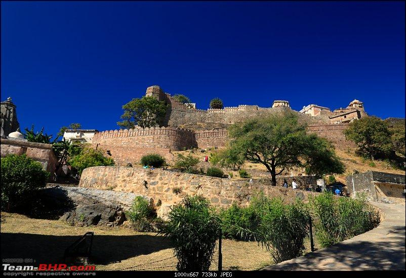 Forts, Birds and Tigers : A 4500 km 18 day road-trip to Rajasthan-_mg_1446.jpg