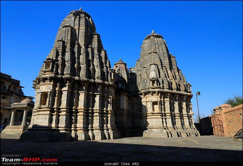 Forts, Birds and Tigers : A 4500 km 18 day road-trip to Rajasthan-_mg_1561.jpg