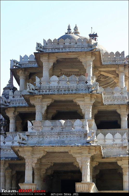 Forts, Birds and Tigers : A 4500 km 18 day road-trip to Rajasthan-_mg_1709.jpg