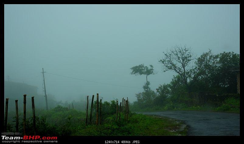 Quick drive through Vagamon and KK road in Kerala-dsc_0478.jpg