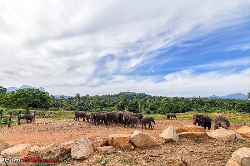Nine days of Sri Lanka in a Honda Shuttle Hybrid-slk003.jpg