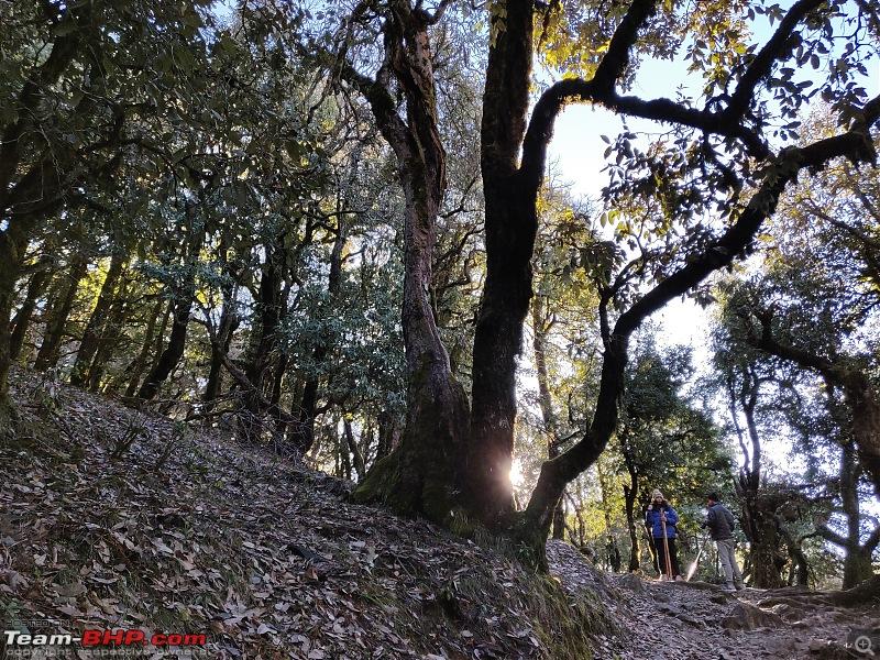 Our crazy first trek to Nag-Tibba, Uttarakhand-img_20190217_081354.jpg