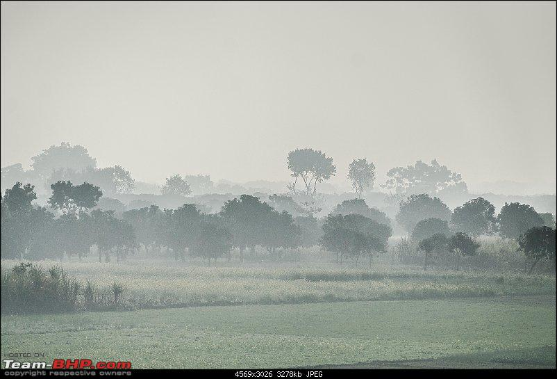Winter wanderings - Rural Bengal & Meghalaya!-_dsc7702.jpg