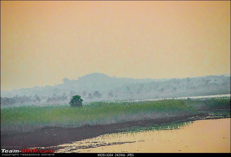 Winter wanderings - Rural Bengal & Meghalaya!-_dsc7770.jpg