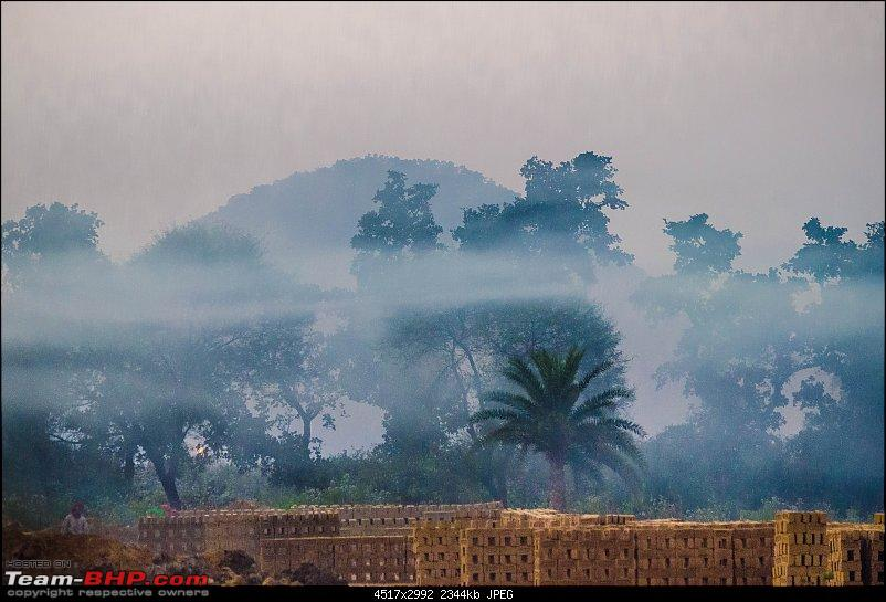 Winter wanderings - Rural Bengal & Meghalaya!-_dsc7775.jpg