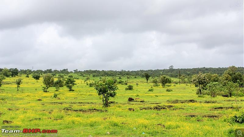 Cross country monsoon drive | Vitara Brezza | 7200 km | 17 days-img_33172.jpg