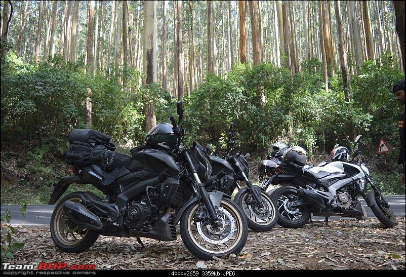 South India Ride: 4 Dominars, 4 Brothers-32.jpg