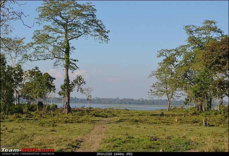 An enchanting drive from West to North East India - Pune to Arunachal, Assam & Meghalaya-agar1-3500x2318.jpg