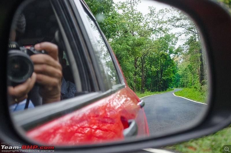 A Summer Drive to the Dooars-11_dsc8193.jpg