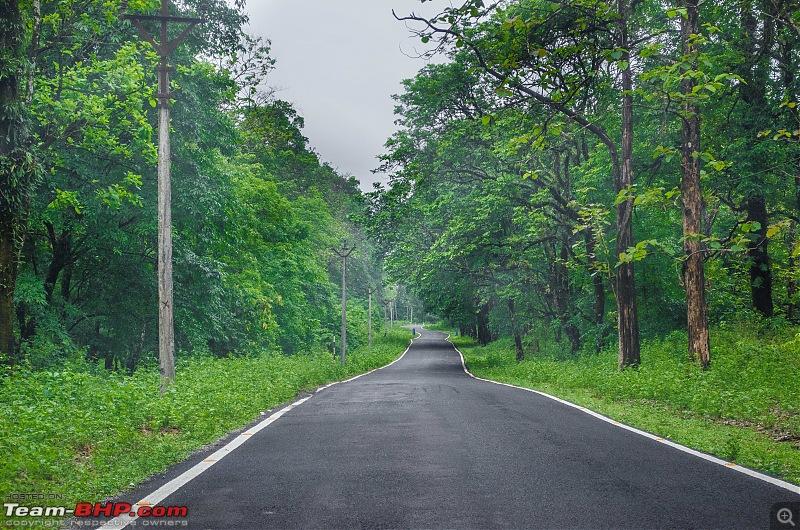 A Summer Drive to the Dooars-03_dsc8196.jpg