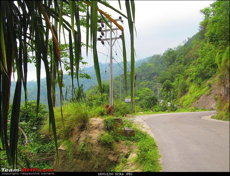Road-trip to the serene yet majestic Borong (South Sikkim)-img_0532.jpg