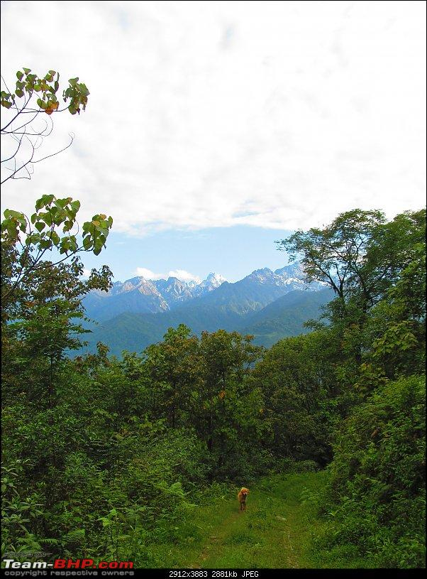 Road-trip to the serene yet majestic Borong (South Sikkim)-img_0627.jpg