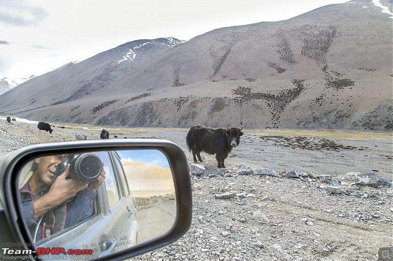 Ladakh Re-Juleh'd! With Siachen - Panamic - Agham - Mitpal Tso - Kaksang La - Tso Kar - Kyun Tso-img_9215.jpg