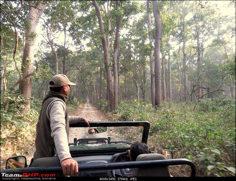 Into the Wild – Road trip to Dudhwa National Park & Tiger Reserve-img_4060.jpg