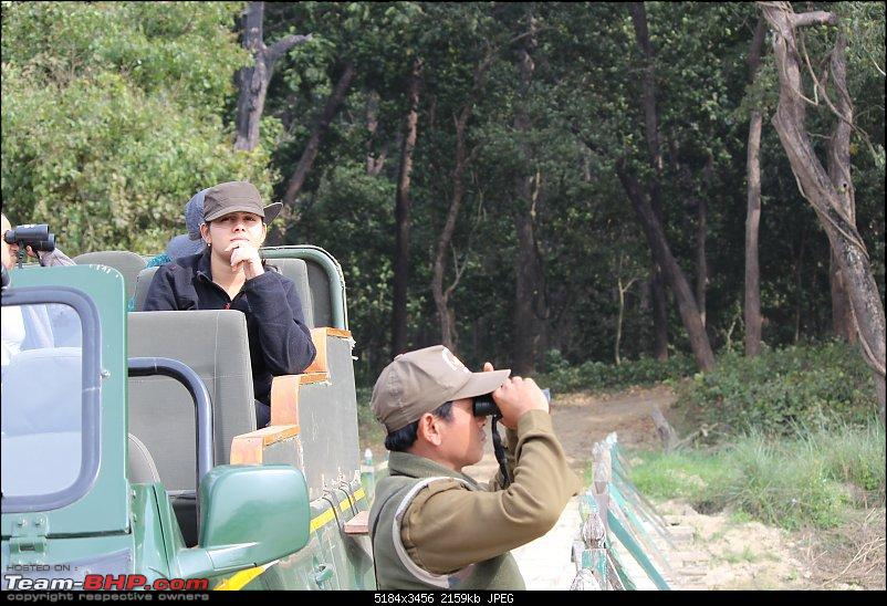 Into the Wild – Road trip to Dudhwa National Park & Tiger Reserve-compress-14-copy.jpg