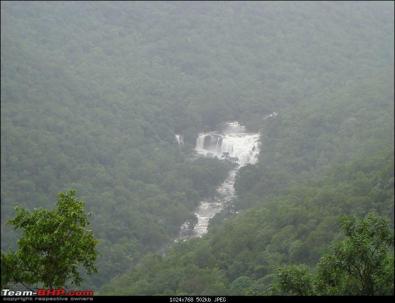 Bangalore – Munnar /Thekkady /Kochi in Swift D..-dsc08433.jpg