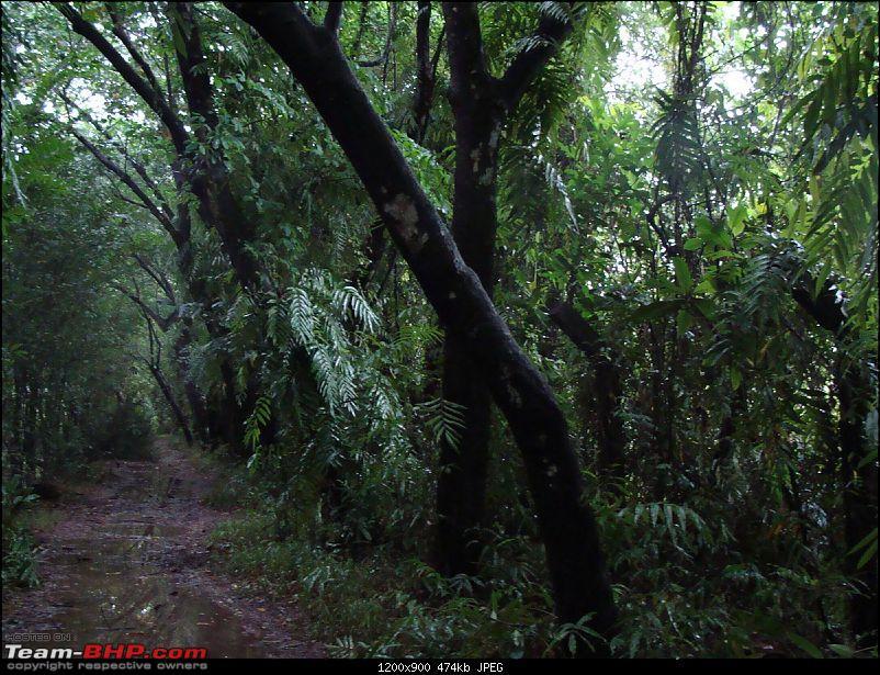 Gujarat - Kerala Odyssey !-goa-kerela-012.jpg