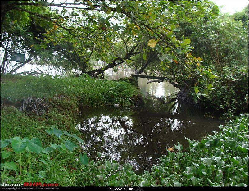 Gujarat - Kerala Odyssey !-goa-kerela-015.jpg