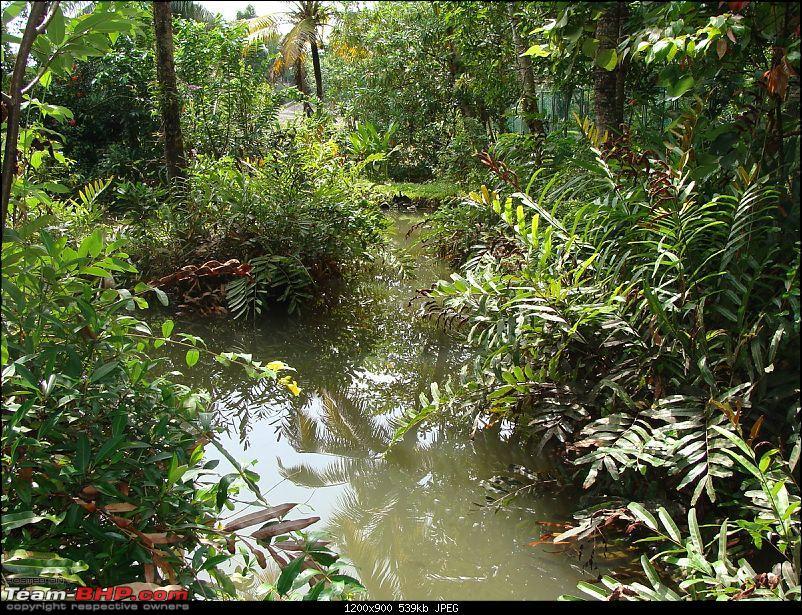 Gujarat - Kerala Odyssey !-goa-kerela-039.jpg