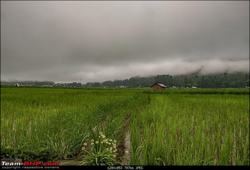 Ground Ziro - The 2019 Dree Festival (Arunachal Pradesh)-20190706_dsf9297hdr.jpg
