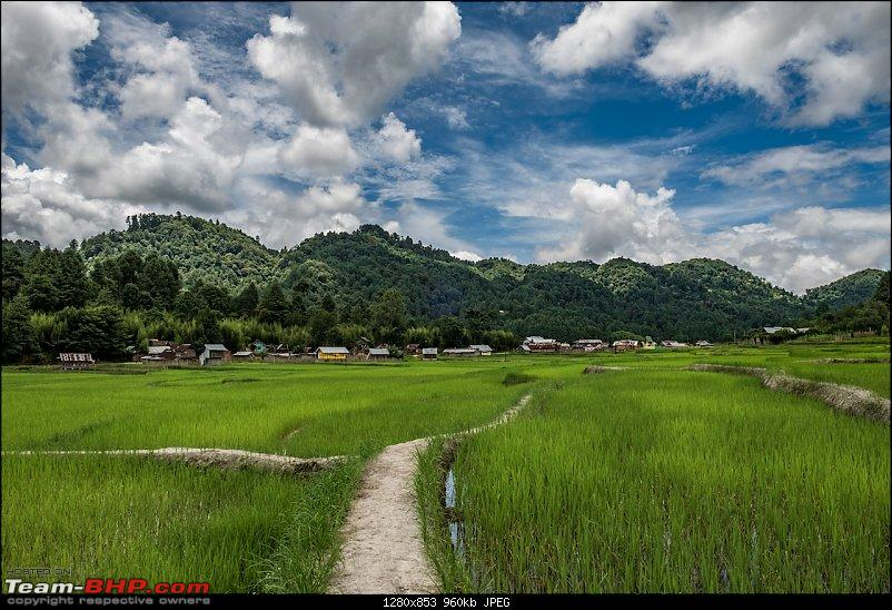 Ground Ziro - The 2019 Dree Festival (Arunachal Pradesh)-20190706_dsf9432hdr.jpg