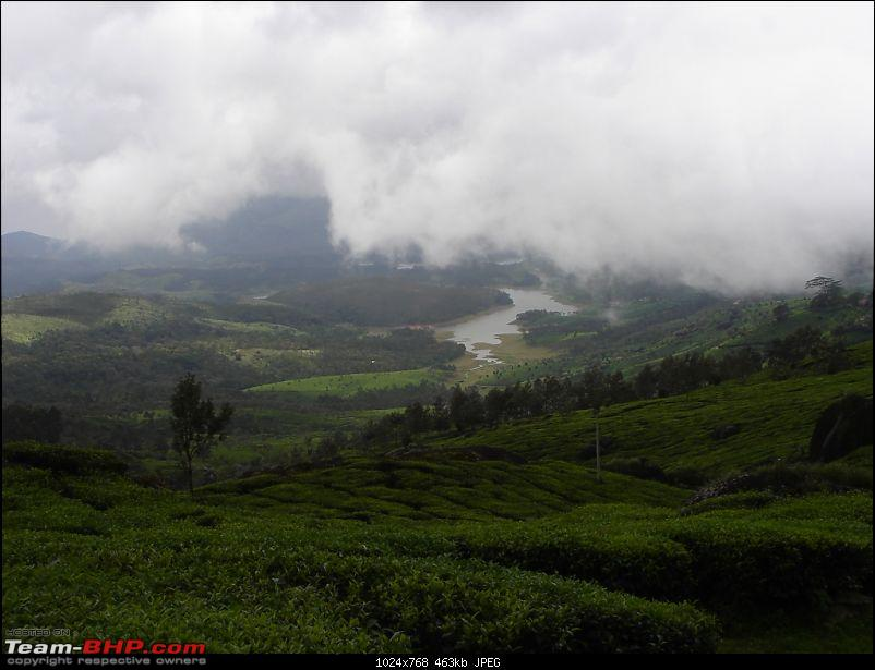 Bangalore � Munnar /Thekkady /Kochi in Swift D..-dsc08764.jpg
